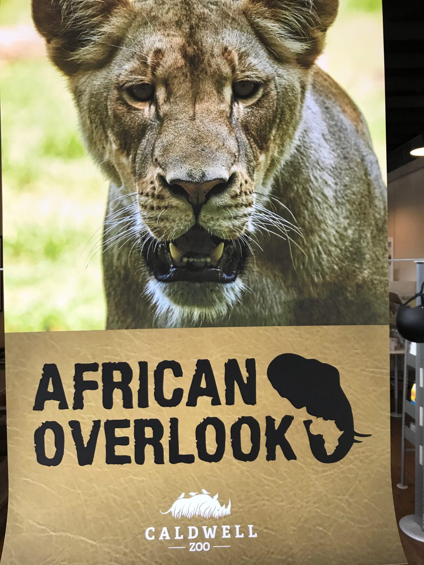 African Overlook Banner